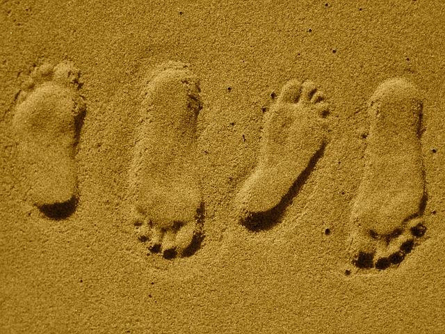 5 Schritte zu einer Beziehung:  Schritt 2- Welcher Partner passt zu mir?
